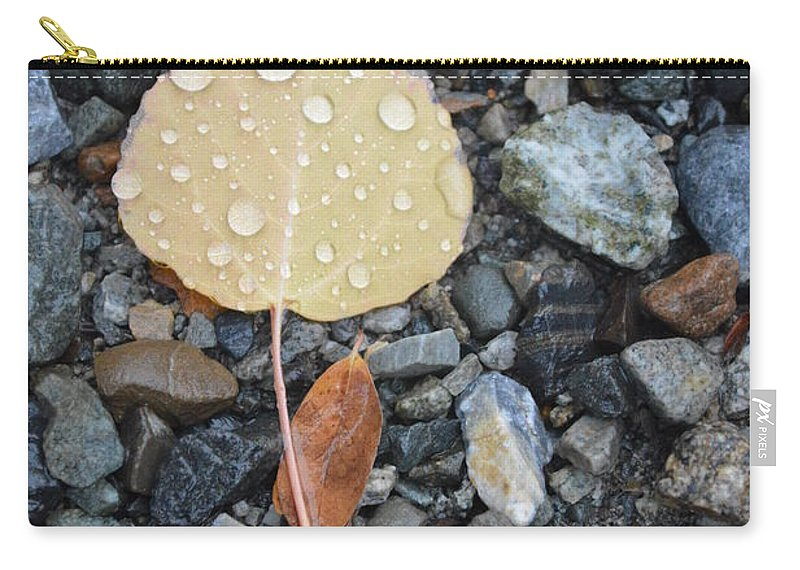 Rain Carry-all Pouch featuring the photograph Too Little Too Late by Brian Boyle