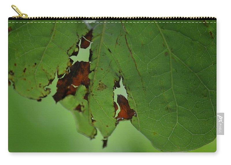 Torn Leaf Abstract Carry-all Pouch featuring the photograph Torn Leaf Abstract by Maria Urso
