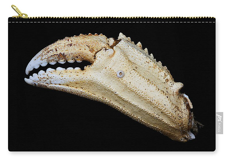 Crab Carry-all Pouch featuring the photograph Toucan Crab Claw by Robert Woodward