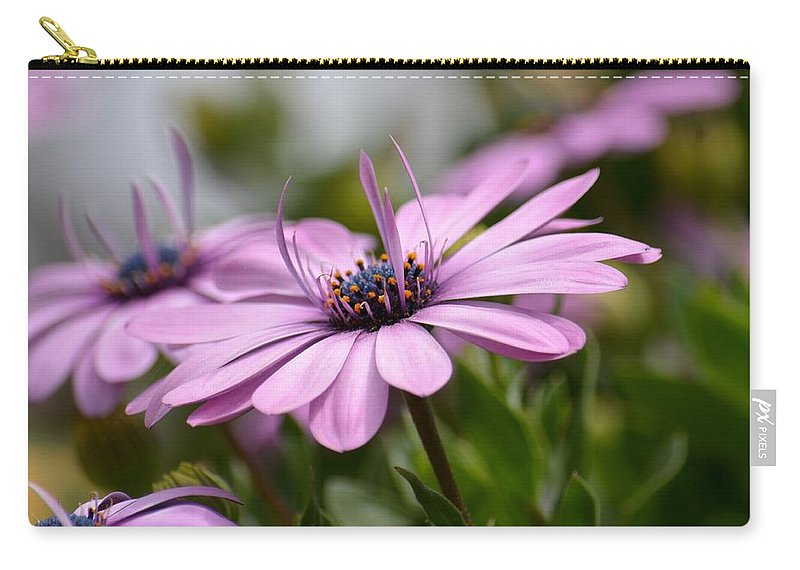 Touch Of Elegance Carry-all Pouch featuring the photograph Touch Of Elegance by Maria Urso
