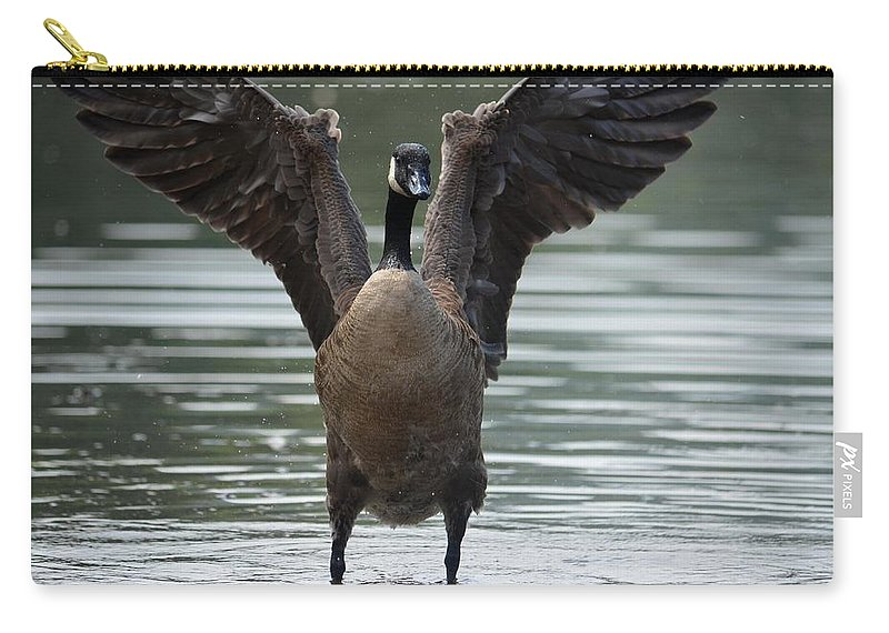 Touchdown Carry-all Pouch featuring the photograph Touchdown by Maria Urso