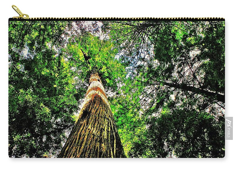 Redwoods Carry-all Pouch featuring the photograph Towering by Benjamin Yeager