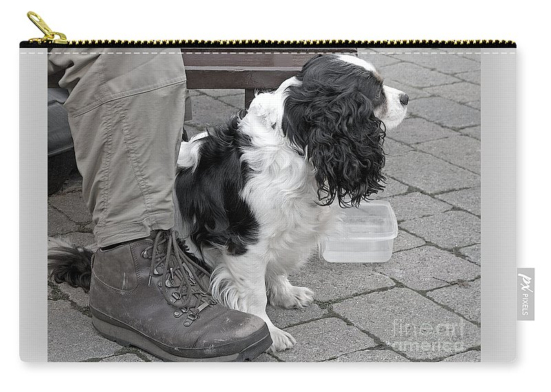 Dog Carry-all Pouch featuring the photograph Travel Weary by Ann Horn