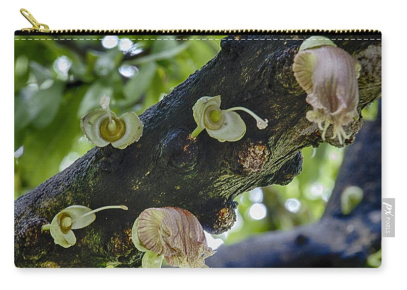 Tree Carry-all Pouch featuring the photograph Tree Flowers by Douglas Barnard