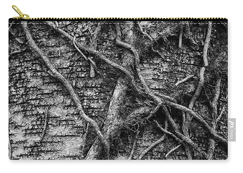 Vine Carry-all Pouch featuring the photograph Tree Hugging by Traci Law
