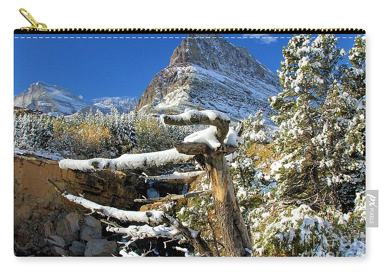 Grinnell Point Carry-all Pouch featuring the photograph Tree In The Way by Adam Jewell