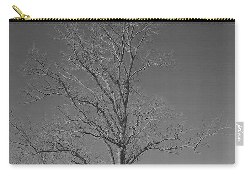 Tree Carry-all Pouch featuring the photograph Tree In Winter by Michelle Miron-Rebbe