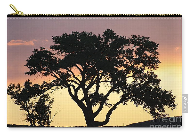 Tree Carry-all Pouch featuring the photograph Tree Of Life by Brandi Maher