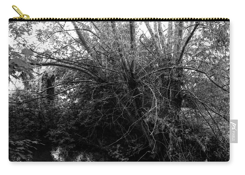Landscape Carry-all Pouch featuring the photograph Tree Of Life by Doc Braham