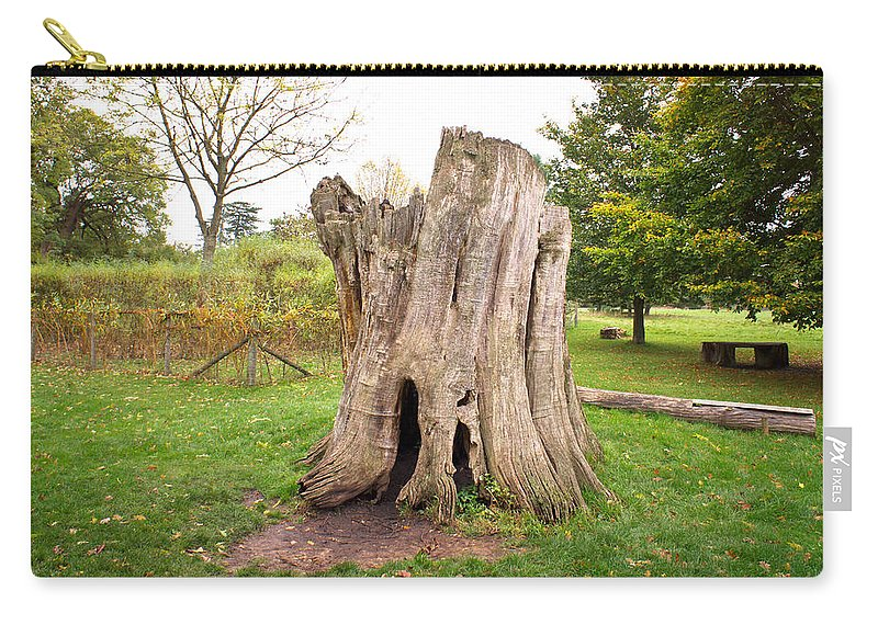 Adventure Carry-all Pouch featuring the photograph Tree Stump by Tom Gowanlock