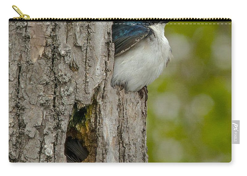 Tree Carry-all Pouch featuring the photograph Tree Swallow by Jayne Gohr