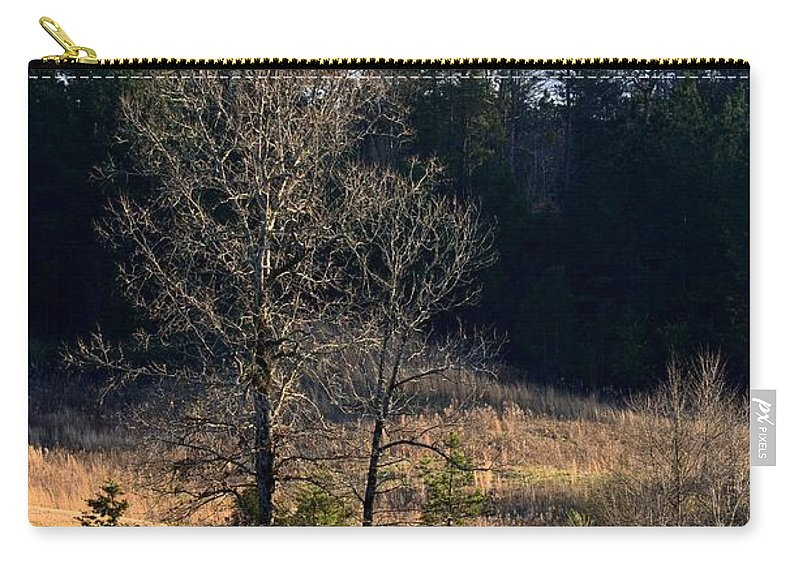 Trees By The Wayside Carry-all Pouch featuring the photograph Trees By The Wayside by Maria Urso