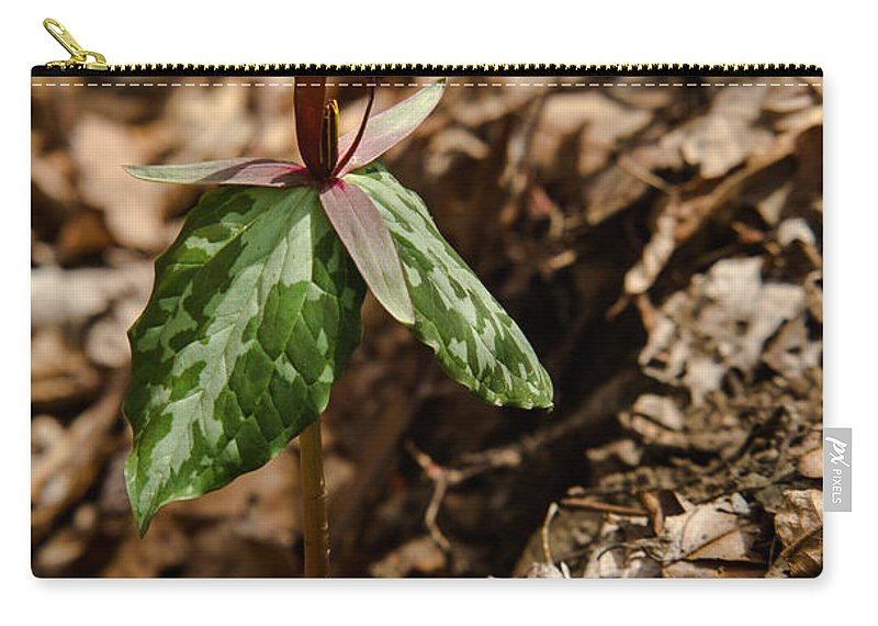 Monocots Carry-all Pouch featuring the photograph Trillium Signal Mountain by Douglas Barnett