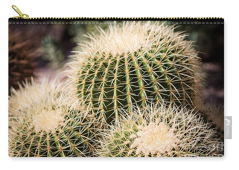 Botanical Carry-all Pouch featuring the photograph Triple Cactus by John Wadleigh