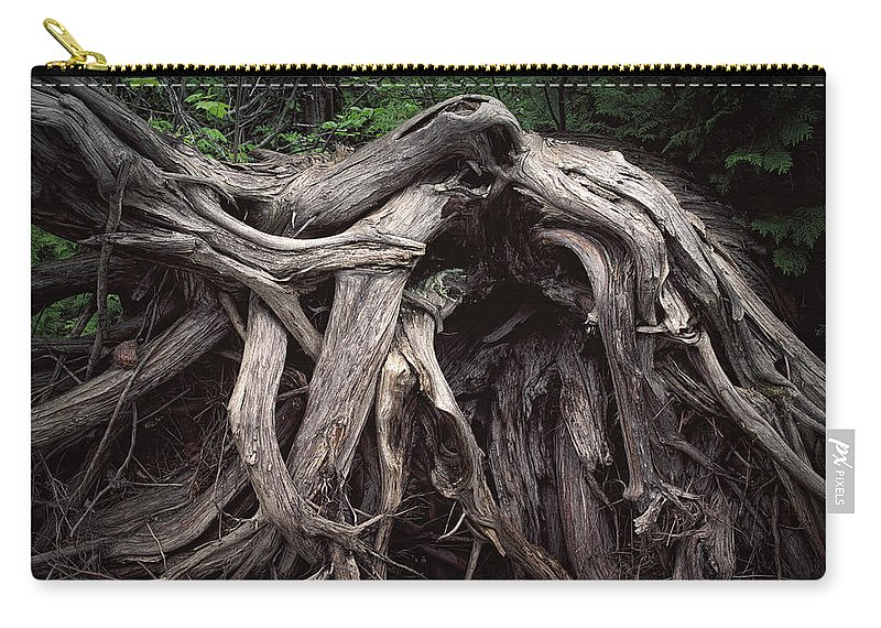 Art; Photography; Tree Trunk; Photograph; Print; Ontario; Wawa; Tree; Tree Branches; Fallen Tree; Tree Roots; Tree Roots; Grass; Color; Colour; Photographic Print; Fine Art; Randynyhof Carry-all Pouch featuring the photograph Troots Of A Fallen Tree By Wawa Ontario by Randall Nyhof