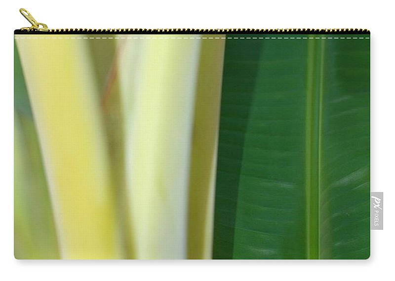 Banana Carry-all Pouch featuring the photograph Tropical Banana Tree by Connie Fox