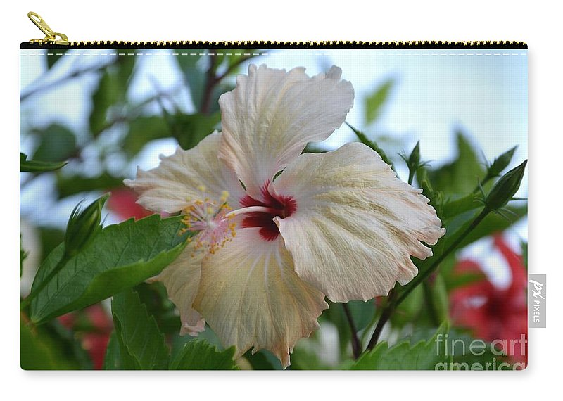 Tropical Carry-all Pouch featuring the photograph Tropical Beauty by Stephanie Guinn