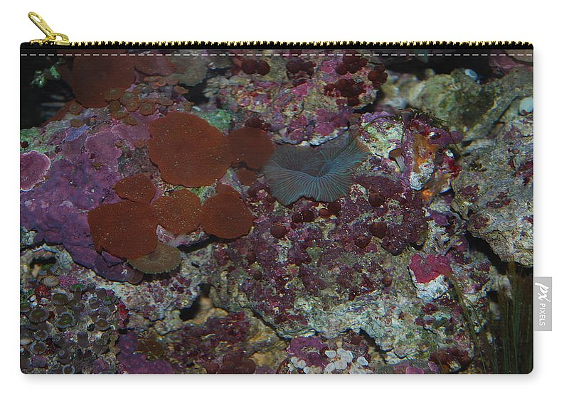 Taken Through Glass Side Of Aquarium Carry-all Pouch featuring the photograph Tropical Coral by Robert Floyd