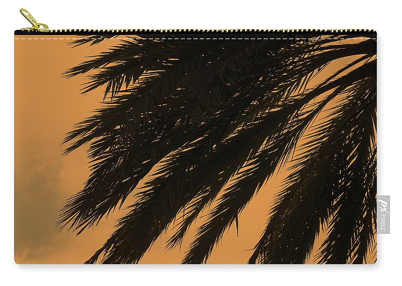 Palm Carry-all Pouch featuring the photograph Tropical Dream by Ricky Barnard