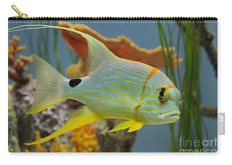 Fish Carry-all Pouch featuring the photograph Tropical Fish by Tonya Hance