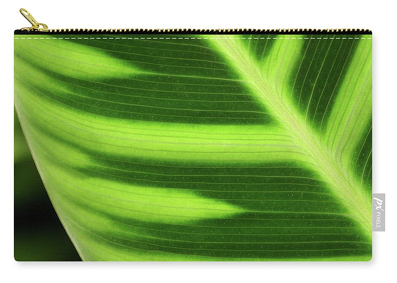 Leaf Carry-all Pouch featuring the photograph Tropical Leaf by Art Block Collections