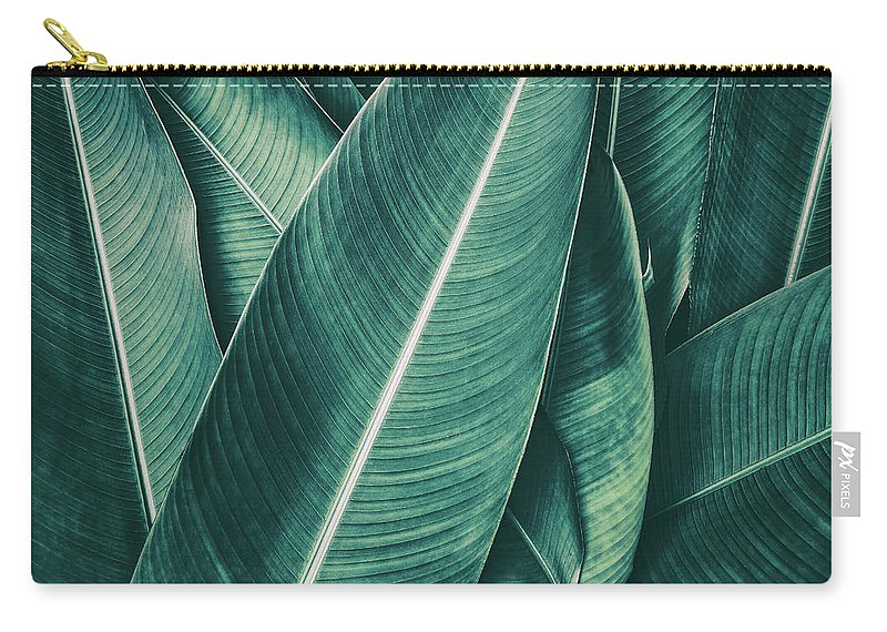 Spa Carry-all Pouch featuring the photograph Tropical Palm Leaf, Dark Green Toned by Pernsanitfoto