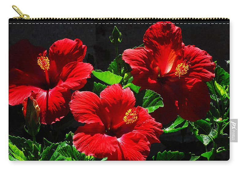 Tropical Hibiscus Carry-all Pouch featuring the photograph Tropical Trio by Lynn Bauer