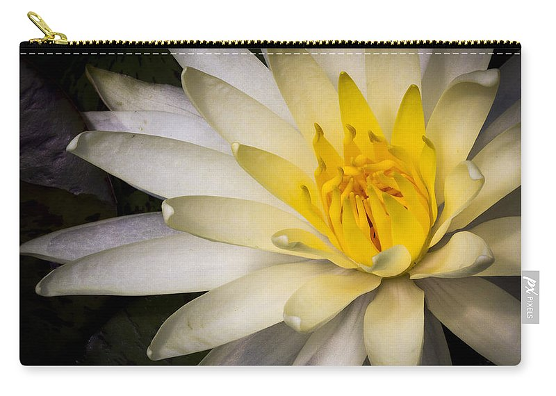 Water Carry-all Pouch featuring the photograph Tropical White Water Lily by Jean Noren