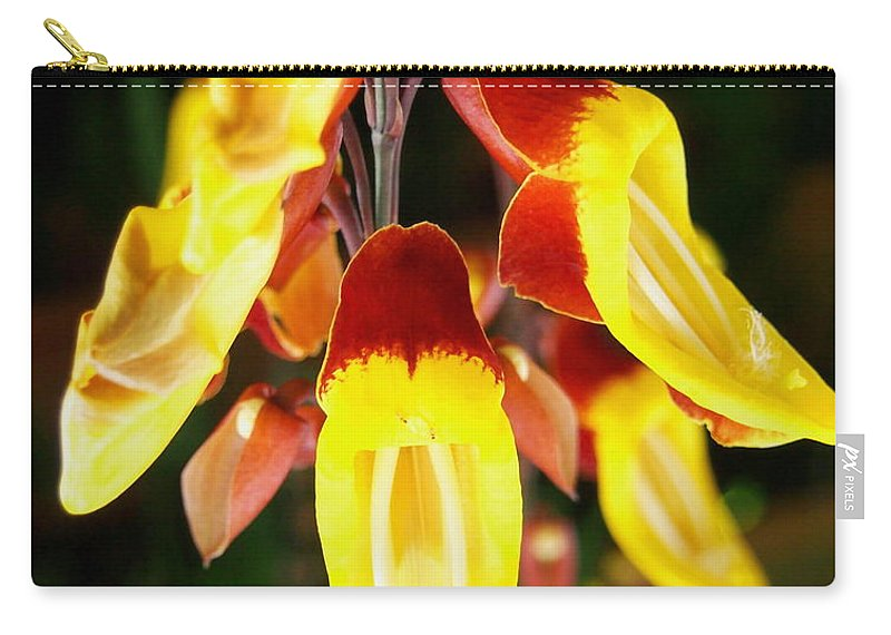 Tropical yellow hanging flowers carry all pouch for sale by amy mcdaniel nature carry all pouch featuring the photograph tropical yellow hanging flowers by amy mcdaniel mightylinksfo
