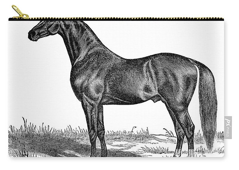Horse Carry-all Pouch featuring the digital art Trotting Horse Engraving by Nnehring