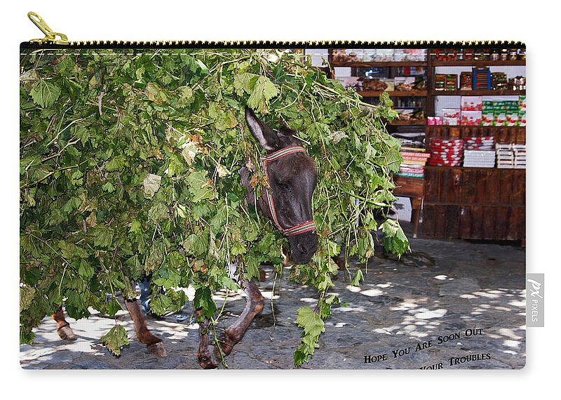 Donkey Loaded Down With Tree Branches Carry-all Pouch featuring the photograph Troubles by Sally Weigand