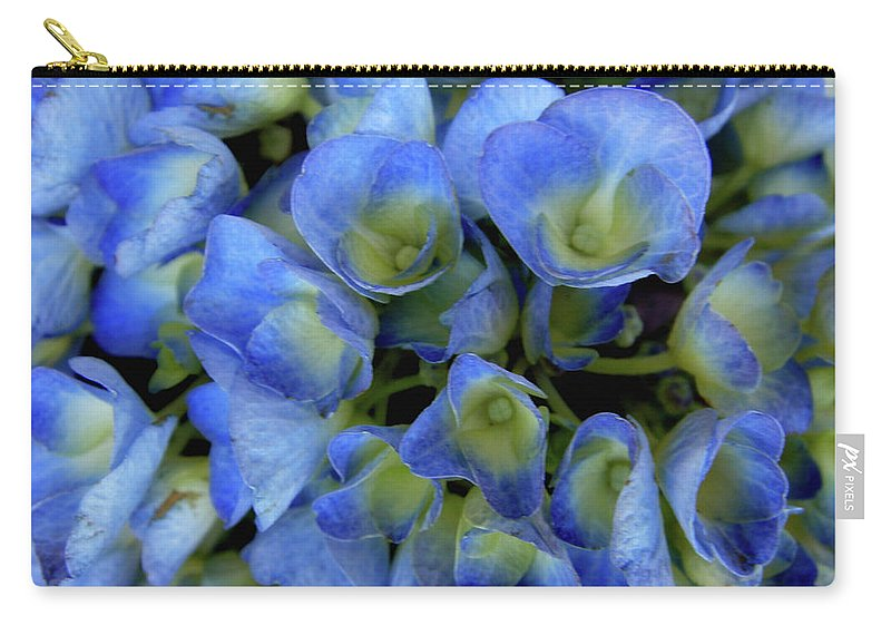 Blue Flowers Carry-all Pouch featuring the photograph True Blue by Donna Blackhall
