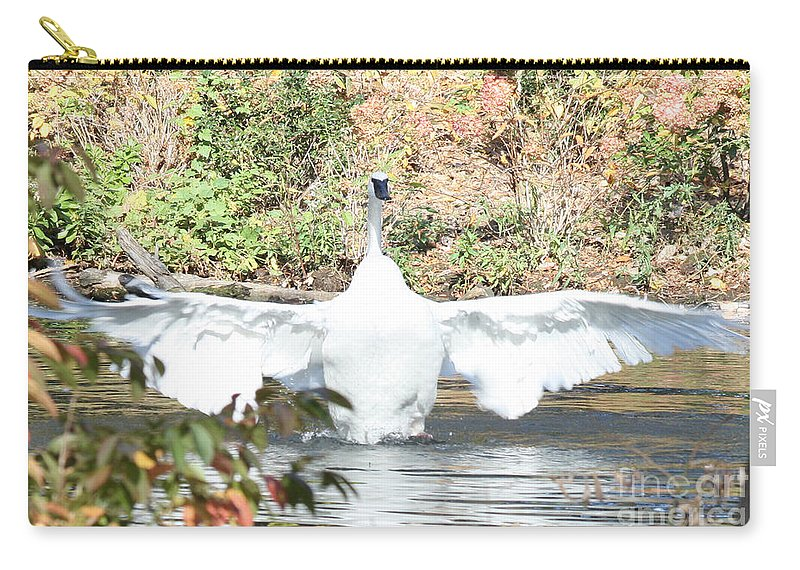 Trumpeter Swan Carry-all Pouch featuring the photograph Trumpeter Swan by John Telfer