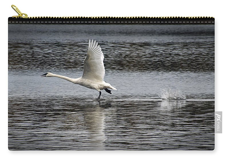 Art Carry-all Pouch featuring the photograph Trumpeter Swan Walking On Water by Randall Nyhof