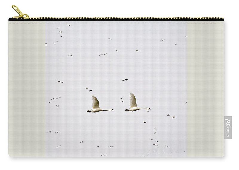 Swans Carry-all Pouch featuring the photograph Trumpeter Swans by Deb Buchanan