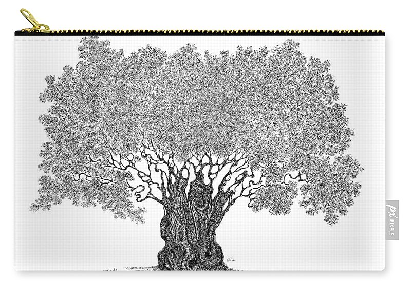 Tree Carry-all Pouch featuring the drawing Truth by Andrea Currie