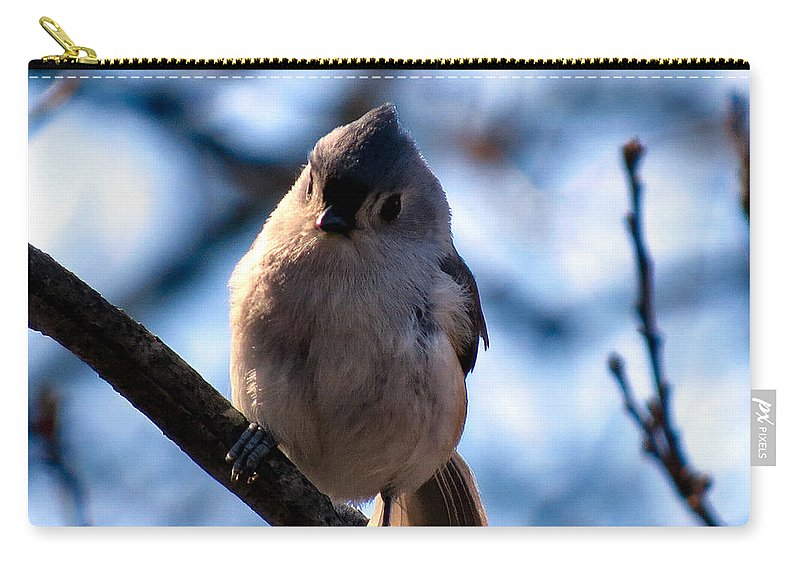 Tuft Carry-all Pouch featuring the photograph Tuffy by Art Dingo