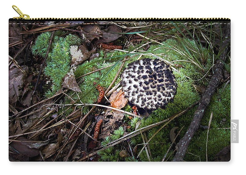 Tufted Carry-all Pouch featuring the photograph Tufted Mushroom Showing by Douglas Barnett
