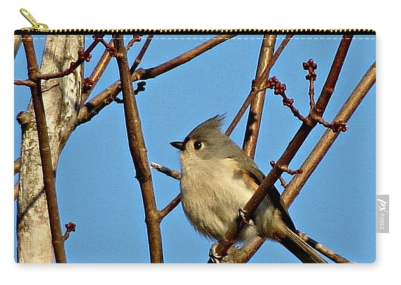 Tufted Titmouse Carry-all Pouch featuring the photograph Tufted Titmouse by MTBobbins Photography