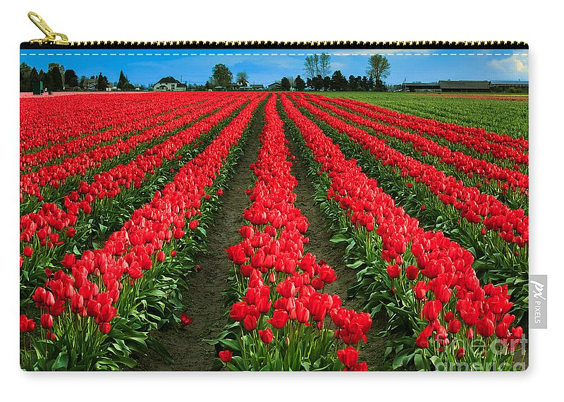 America Carry-all Pouch featuring the photograph Tulip Cornucopia by Inge Johnsson
