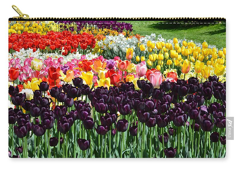 Flowers Carry-all Pouch featuring the photograph Tulip Field 1 by Wanda J King