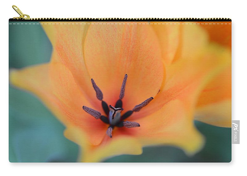 Tulips Carry-all Pouch featuring the photograph Tulip In Orange by Randy Giesbrecht