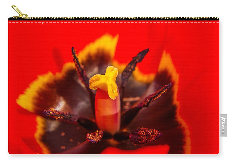 Yellow Carry-all Pouch featuring the photograph Tulip Stamp by Alex Hiemstra