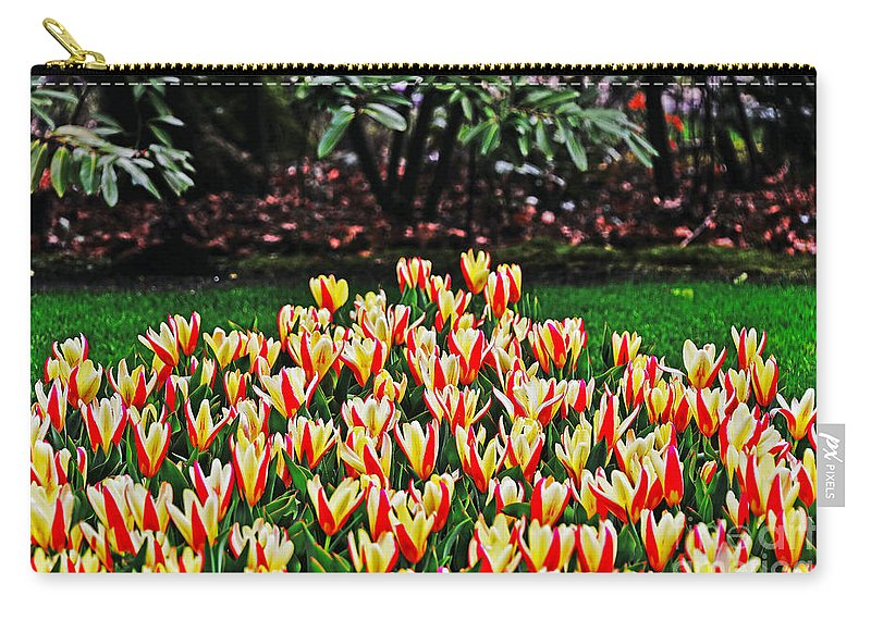 Travel Carry-all Pouch featuring the photograph Tulip Stripe Garden by Elvis Vaughn