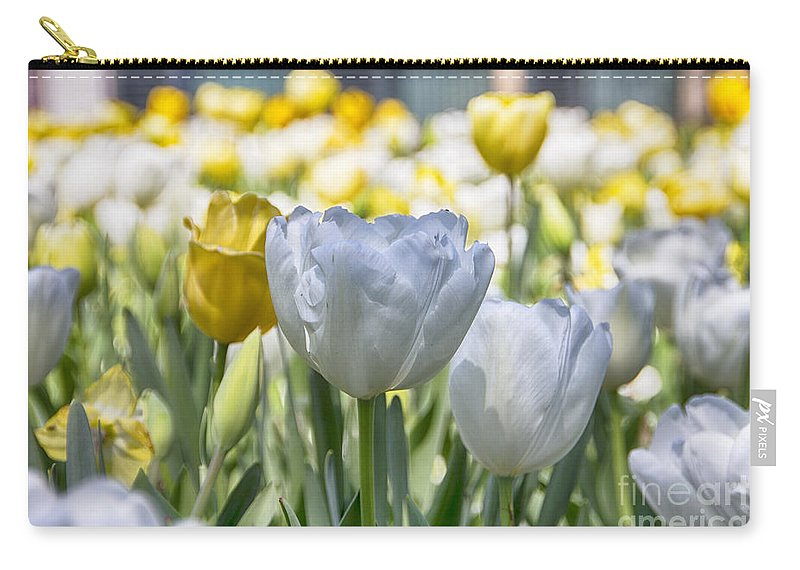 Tulips Carry-all Pouch featuring the photograph Tulips At Dallas Arboretum V28 by Douglas Barnard