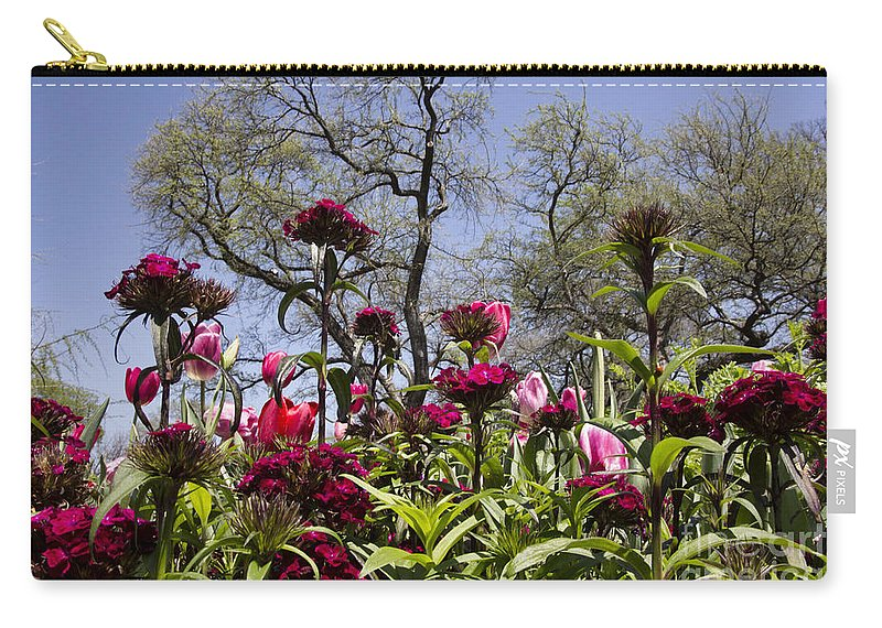 Tulips Carry-all Pouch featuring the photograph Tulips At Dallas Arboretum V35 by Douglas Barnard