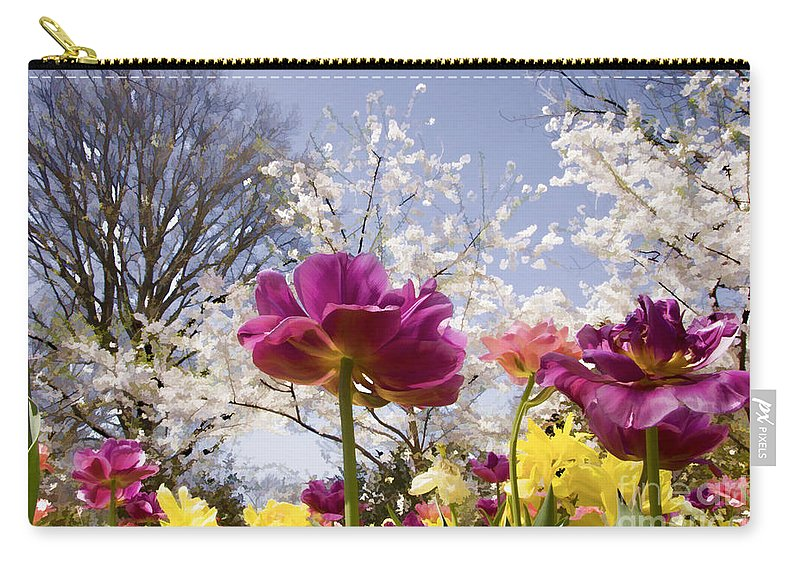 Tulips Carry-all Pouch featuring the photograph Tulips At Dallas Arboretum V46 by Douglas Barnard