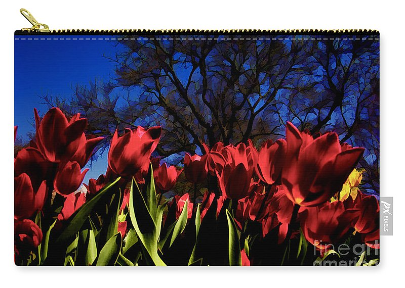 Tulips Carry-all Pouch featuring the photograph Tulips At Dallas Arboretum V63 by Douglas Barnard