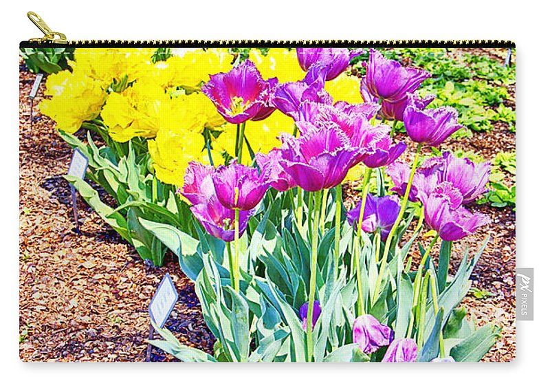 Tulips Carry-all Pouch featuring the photograph Tulips At Dallas Arboretum V65 by Douglas Barnard