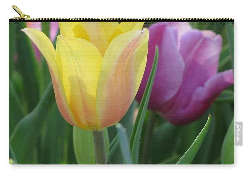 Tulip Carry-all Pouch featuring the photograph Tulips - Caring Thoughts 03 by Pamela Critchlow